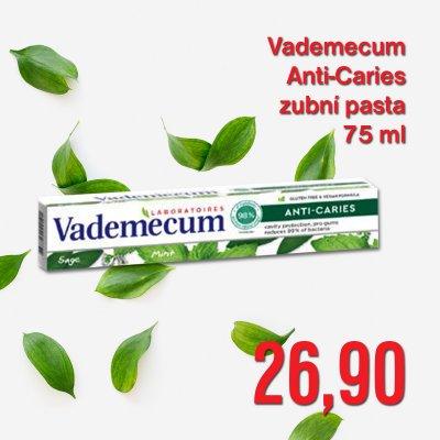 Vademecum Anti-Caries 75 ml
